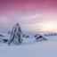 Ondergesneeuwd dorp tijdens zonsondergang
