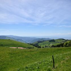 Schwarzwalder uitzicht