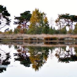 Kalmthout Heide