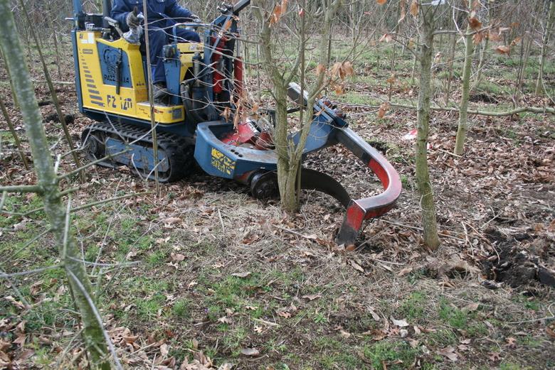 Rooien van Boom 1/2 - Het mes begint met snijden en gaat onder de wortels door....