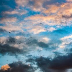 een wisselvallige zonsondergang