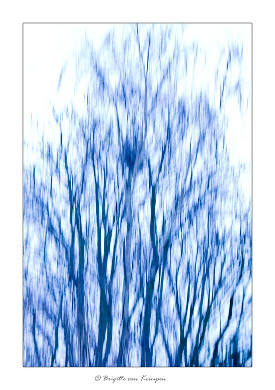 Stormy Blues - Ik ben in een creatieve bui dus wordt er weer volop geexperimenteerd.<br /> Kan me voor stellen dat je het mooi vindt of verschrikkeli