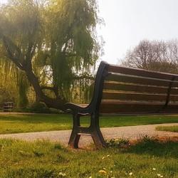 In het park...