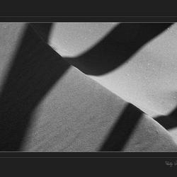 shadows...1