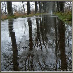 op een regenachtige dag