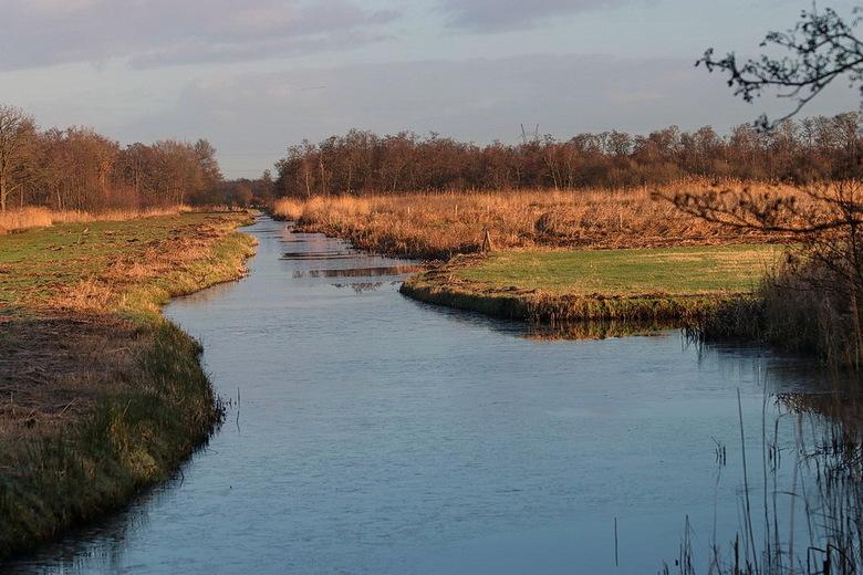 Schoonheid der natuur. - Natuurgebied tussen s&#039; Graveland en Ankeveen dat aansluit naar het Naardermeer.<br /> <br /> 5 januari 2017.<br /> Gr