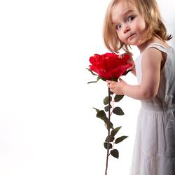 Flowergirl high-key