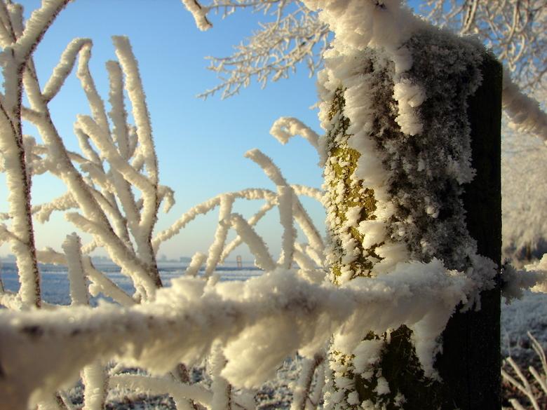 sneeuwpaal - Foto is gemaakt a.d. Binnenmaas te Westmaas.