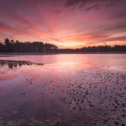 Rode zonsopkomst