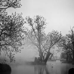 Mist to mist