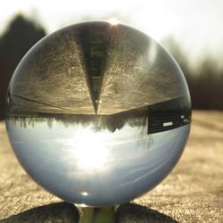 Glazenbollen