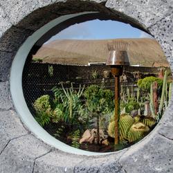 Lanzarote 23 - cactustuin ontworpen door César Manrique