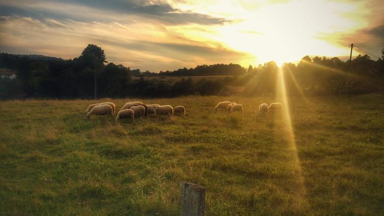 Natuur in Bosnie - Mooie zonsondergang in een Bosnisch landschap