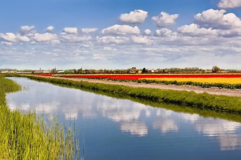 Lovely colours - Heerlijke lentedag