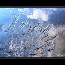 terugtrekkend water 1