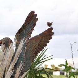Kleine vleugeltjes ,Op een grote