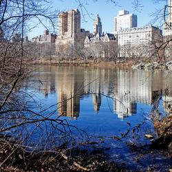 Wandeling door Central Park in de winter.