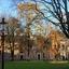Herfst op het Martinikerkhof
