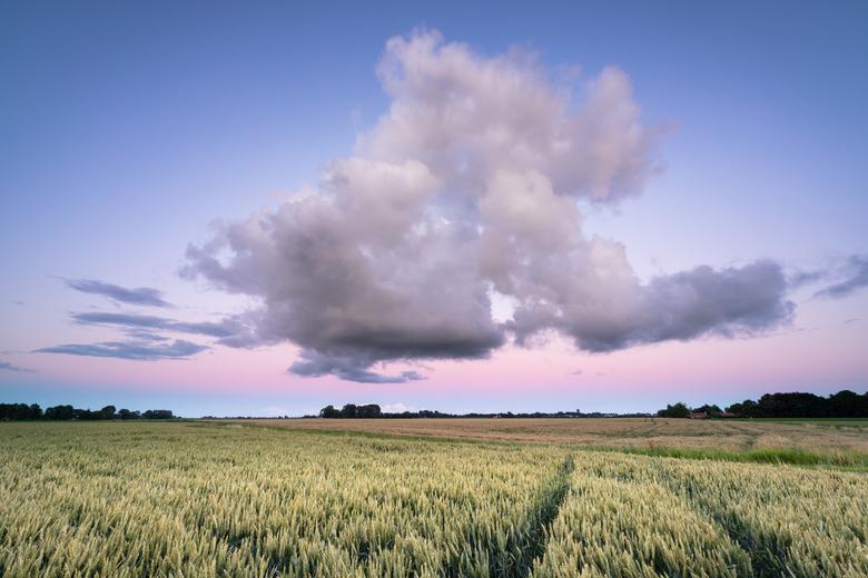 The other side - Achterom kijken bij een zonsondergang loont soms ook! Net na zonsondergang kleurde de lucht mooi paars, roze met een dikke wolk als b