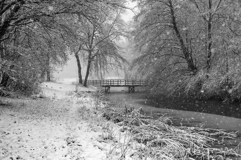parkbrug staddijk -