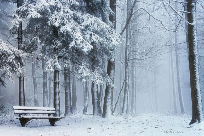 """White Silence. - Er is al wat sneeuw gevallen, maar het blijft helaas niet liggen. Ik hoop op een dik pak deze winter! <img  src=""""/images/smileys/wilt"""
