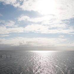 friesland 15-09-2012 001.JPG