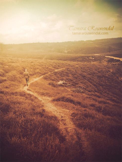 Journey - Wil je meer van mijn fotografie zien? Bezoek dan http://tammyphotography.deviantart.com<br /> <br /> Copyright © by Tamara Rouwendal<br />