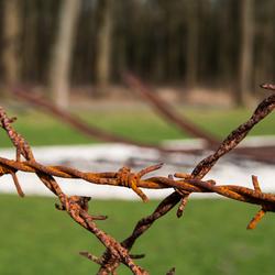 Westerbork memorial