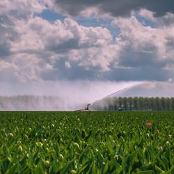 land sproeien
