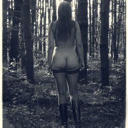 tussen de bomen valt het licht