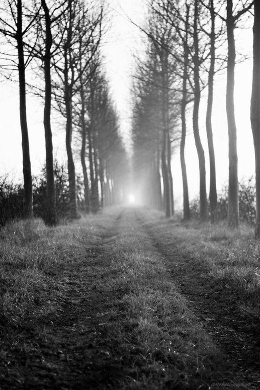 Endless light..... - Endless light.jpg