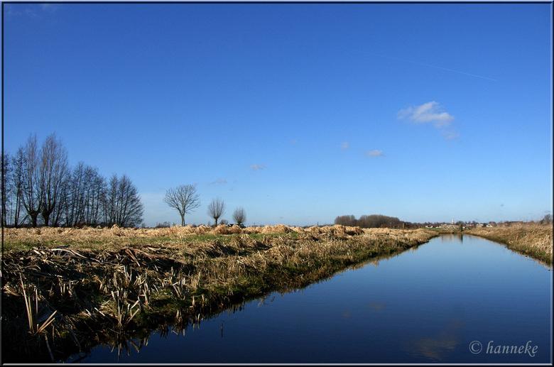 Polderkiekje 2 - Het mooie weer van 8 febr.  benut om van de natuur in de polder van de Krimpenerwaard te genieten.<br /> Plaats: Langs Bilwijk, tuss