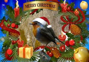 Merry Chirstmas van uit Gelderland - Ik wens jullie allemaal fijne kerstdagen !!!!<br /> <br /> <br /> Groetjes,   Cor.<br />