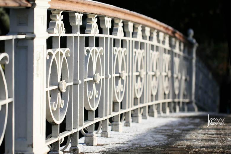 Brug - Een bruggetje in het Vondelpark. Prachtig belicht door het ochtendzonnetje