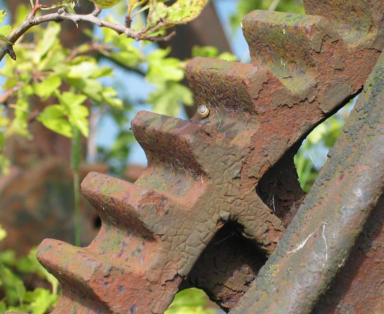 Vergeten - Een roestig wiel van een sluis in de Uiterwaarden bij Culemborg.