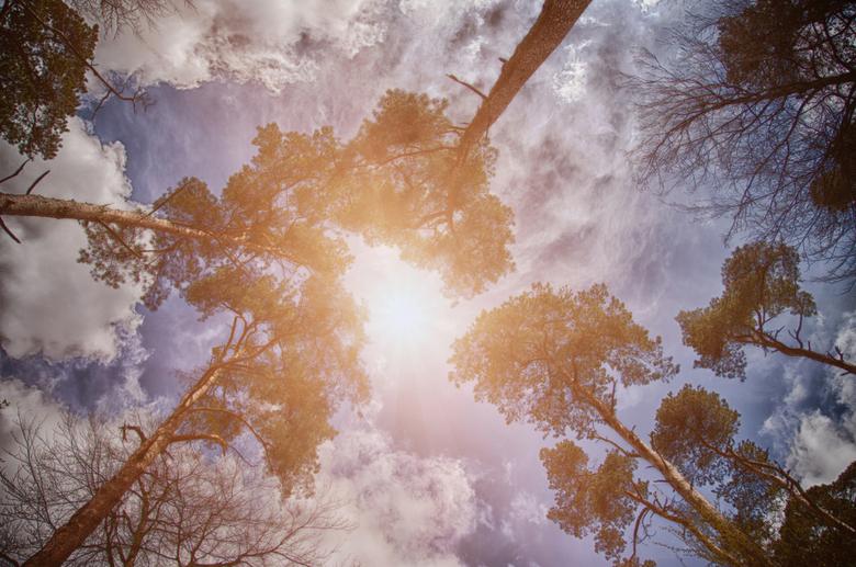 Heavens Light - En daar was het...we konden alvast een glimp opvangen van Heaven!