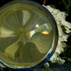 Vergrootglas