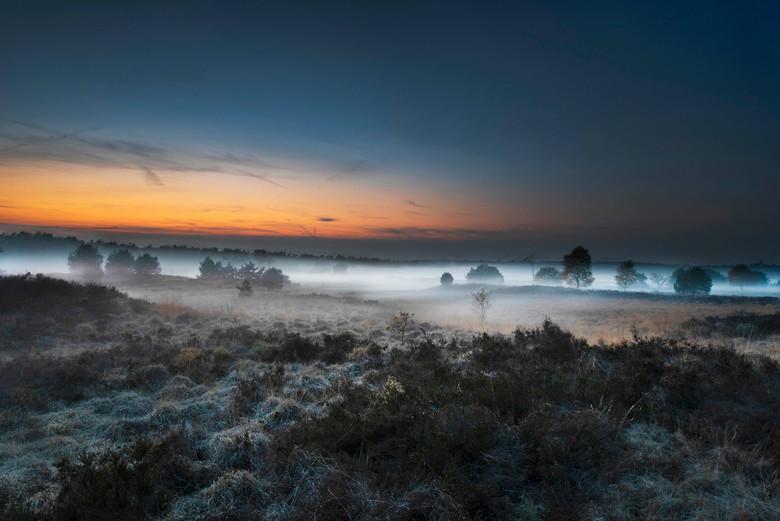 Rozendaalse veld - Een prachtige mistige avond op het rozendaalse veld - de veluwe.