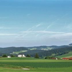 PANO  Beierse woud nr52  Wegscheid  Am Ponzaun   23 juni 2017