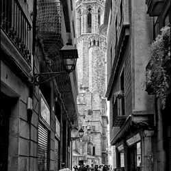 Barcelona 2012-11