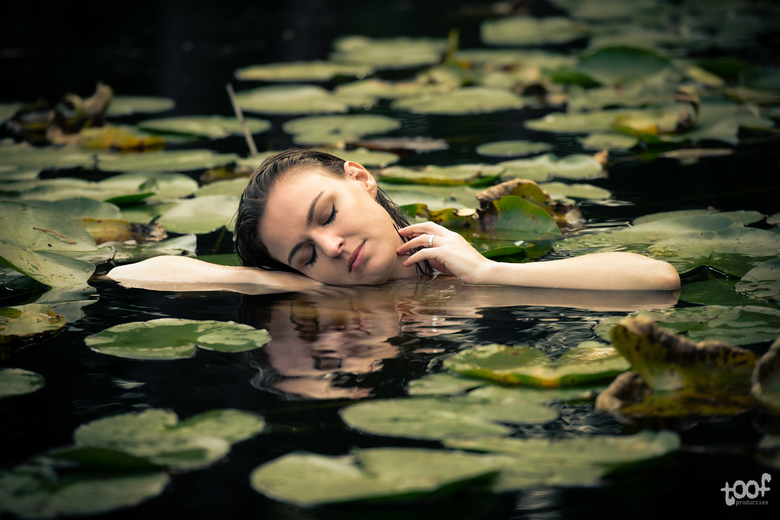 In a bed of lilies... -