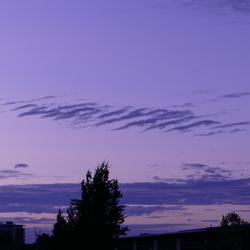 Paarse lucht