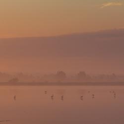 Ontwaken @ Lauwersmeer