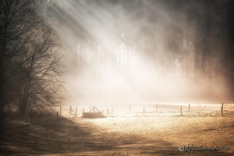 Sunrise - Een mistige ochtend in de buurt van Hoenderloo.