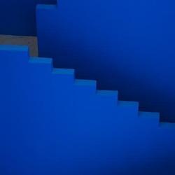 Blauwe trap