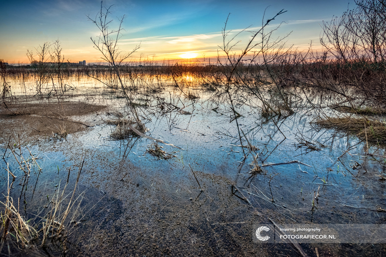 Een prachtige ochtend in de Hollandse delta - Wanneer je naar de foto kijkt zou je kunnen denken dat deze foto ergens op de steppen of toendra's