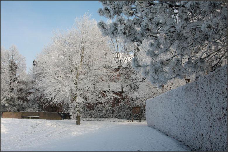 nog maar een mooi sneeuw plaatje  - <br />  ja nu is het over met de mooie foto&#039;s dus nu maar even nog na genieten van al die mooie opnames, en