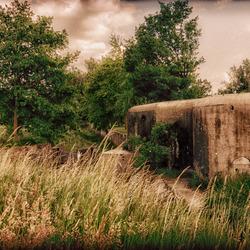Bunker Haachts Broek
