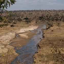 Uitzicht op de Serengeti in Tanzania