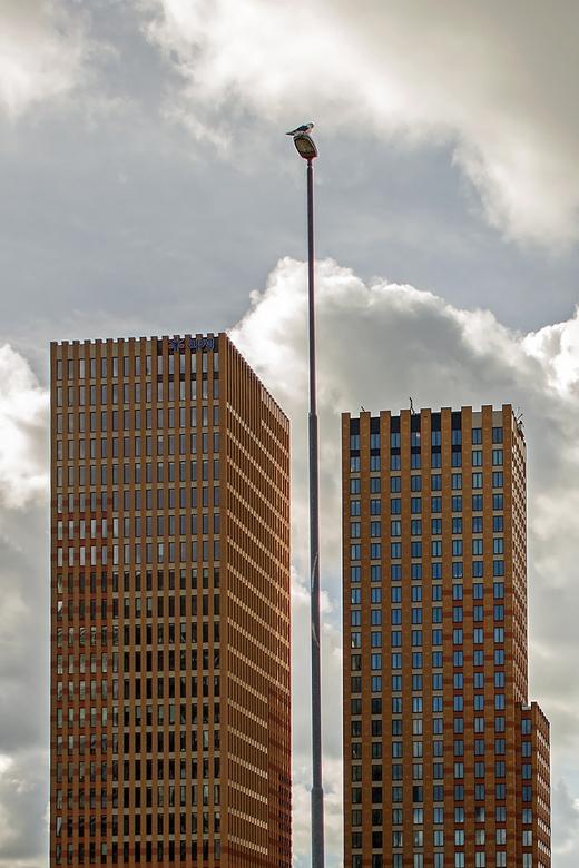 Zuidas 57 - Vanaf station Amsterdam Zuid